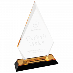 patients choice acrylic award